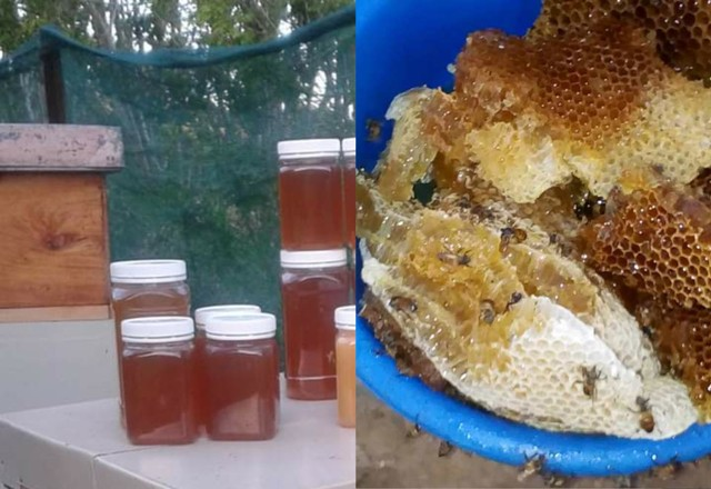 10 Ways Of Using Raw Honey For General Wellness Of The Body