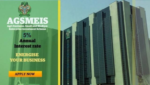 How To Apply For N10 million CBN AGSMEIS 5% Loan