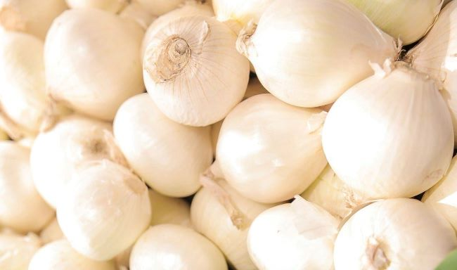 Eleven (11) Different Types Of Onions And Their Uses