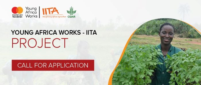 Apply and Participant In Young Africa Works-IITA Project 2020